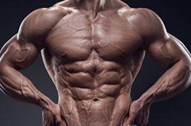 Muscular Gold